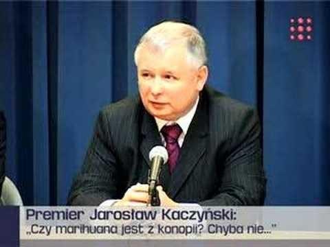 Jaroslaw-Kaczynski-o-trawie